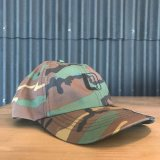 【LOW DOWN CUSTOMS】LDC6パネル CAP CAMO